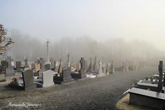 Los Calvarios 01 (alanchanflor) Tags: francia normandia niebla cementerio tumba canon frio