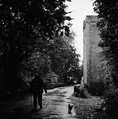 The Tower (Purple Field) Tags: ireland bw dog tower 120 6x6 tlr film monochrome analog rolleiflex walking square kodak trix 400tx medium 犬 散歩 二眼レフ f28 schneider kreuznach coole 80mm モノクロ 塔 白黒 28f xenotar 銀塩 アイルランド フィルム クール 正方形 アナログ ローライフレックス 中判 canoscan8800f コダック トライx シュナイダー・クロイツナッハ クセノタール イエイツ
