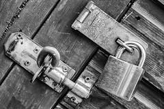 Shed Locks - Silver Efex (Dacmirc) Tags: