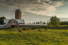 A Pastoral Evening (Kevin Hall 33) Tags: rural ns farm