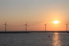 Arrival At Dawn in Zeebrugge (pcurto) Tags: sea port sunrise landscape dawn europe sailing belgium cruising windmills zeebruge