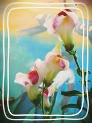 Un Nuevo Dia #Reto365Fotos (mayavilla) Tags: flores gracias flor vida dios perritos gritar campanitas nuevodia proyecto365 agradezco hoyquiero reto365fotos noperfecta