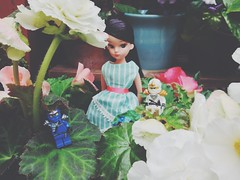 #Love these anniversary repro #Licca # from #LiccaCastle!!!  #nostalgia #retro #vintage  #oldschool #  (TOETY LIANG) Tags: love vintage oldschool retro nostalgia licca   liccacastle