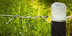 no trespass (Simone.Com) Tags: light bw nikon gate border pole barbedwire enclosure filospinato