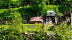 #190 (ekidreki) Tags: life street summer house green nature project garden lens landscape 50mm prime landscapes nikon quote serbia fast quotes land 365 balkans nikkor 50 catchy balkan d610 serbie primelens prijepolje 99a mileeva 50mm18g