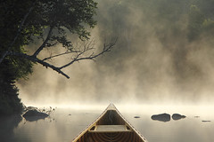 Canoeing on a Misty Lake (Brian Lasenby) Tags: wood morning travel trees summer sky mist lake ontario canada reflection nature water weather fog forest sunrise landscape dawn boat exercise peaceful wideangle canoe adventure journey shore cedar bow transportation northamerica leisure aquatic wilderness muskoka tranquil haliburton active freshwater earlylight