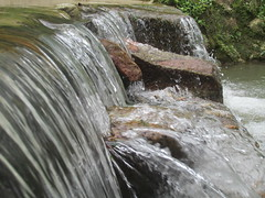 Minca (jodyking1) Tags: santa horse bird nature coffee beautiful birds river landscape waterfall view farm wildlife natureza waterfalls marta humming finca minca