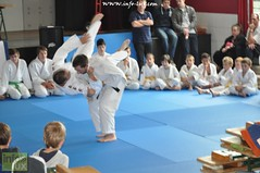 Judo-habay054