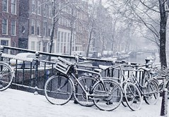 Snow falls beautiful but cold in the Jordaan (B℮n) Tags: amsterdam bloemgracht snow covered bikes bycicles eerstebloemdwarsstraat holland netherlands canals winter cold wester church jordaan street anne frank house dutch people scooter gezellig cafés snowy snowfall atmosphere colorful windows walk walking bike cozy westerkerk rondvaartboot boat light rembrandt corner water canal weather cool sunset 1000km file celcius trees mokum pakhuis grachtengordel unesco world heritage sled sleding slee seagull lekkersluis nowandthen meeuw seagulls meeuwen bycicle 1°c sun shadows sneeuw brug 50faves topf50 100faves topf100
