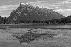 Rundle reflected (bichane) Tags: banff national park alberta canada mt rundle mountain monochrome reflected reflection