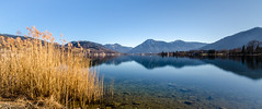 Mountain view (hjuengst) Tags: tegernsee mountains lake reflection weed blue wallberg badwiessee bavaria