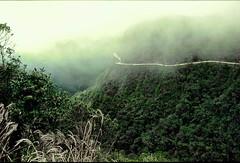 Bolivia, Misty Yungas Road (gerard eder) Tags: landscape landschaft mountains montañas gebirge paisajes world travel reise viajes america southamerica südamerika sudamérica sudamerica bolivia lasyungas deathroad yungas