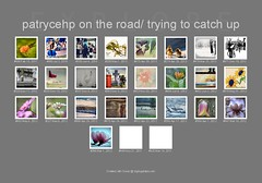 Flickr 2017 (patrycehp on the road/ trying to catch up) Tags: fdsflickrtoys bighugelabs