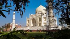 Taj Mahal (11)