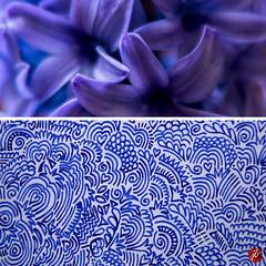 Die fünf Minuten klitzekleine, blaue Melancholie (bornschein) Tags: blue flower drawing dyptichon dyptich heart pain quadratduo