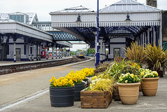 Blooming Marvelous (whosoever2) Tags: pots flowers stirling station scotland uk gb greatbritain unitedkingdom dmu class170 170477 scotrail 2p33 may 2016 sony dsc rx100m3