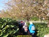 """2017-04-05 Rondje Amersfoort 25 Km  (19) • <a style=""""font-size:0.8em;"""" href=""""http://www.flickr.com/photos/118469228@N03/33706303602/"""" target=""""_blank"""">View on Flickr</a>"""