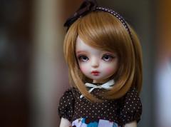 Mus w/ different wig (Mrs Poppie ✿) Tags: bjd 16bjd tinybjd bambicrony ciaobella ciaobellavanilla basic dolls