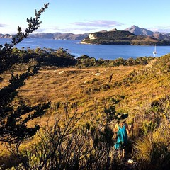 088/365 • yesterday - returning to Spain Bay from a BIG walk to Stephens Bay • . #spainbay #6yo #tasmania #portdavey #southwest #discovertasmania #tassiestyle #bellalunaboat #Autumn2017 #cruising