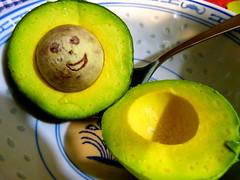It's avocado time! (Sandy Austin) Tags: light newzealand reed avocado auckland northisland massey westauckland sandyaustin panasoniclumixdmcfz40