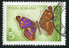 Romania 0707 m (roook76) Tags: old hairy 1969 nature beautiful beauty animal vintage butterfly bug insect fly ancient message mail natural bright antique postcard wing historic retro stamp seal romania envelope tropical letter aged biology fragile postage ilia postmark philately apatura