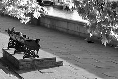 WHEREVER I LAY MY HAT, THAT'S MY HOME (DESPITE STRAIGHT LINES) Tags: life street city morning trees summer portrait blackandwhite sunlight man london tourism thames sunrise bench dawn mono early am flickr day pavement candid homeless capital july streetlife tourist southbank foliage sidewalk story fate tragedy reality riverthames embankment tramp harsh vagrant victoriaembankment londontown livingonthestreet sleepingrough paulwilliams lifeonthestreet homelessperson twistoffate metalbench whereverilaymyhat londonembankment despitestraightlines ilobsterit