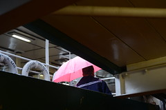 a pink umbrella (nakgnehc) Tags: street pink umbrella hongkong candid sailor starferry d800 nikkors5cmf2