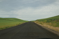 Let Me See You My Old Friend (jimoliverphotography) Tags: old morning blue sky white black get green me clouds see washington friend state northwest you south tan x farmland best we hills idaho wa farms crops roads title inland eastern started let rolling alternate palouse the my