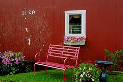 The Red Bench (bjebie) Tags: flowers ohio window reflections bench birdbath colorful summertime parkbench windowbox 1120 redbench hartvilleohio starkcountyohio