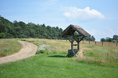 NationalparkMuritz_10 (_windprincess) Tags: park germany deutschland nationalpark reisen fahrrad radtour mritz mritznationalpark