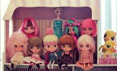 BaD August - 1 Family Shelf