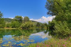 20140802-FD1A0141.jpg (Chorizo from Berlin) Tags: montenegro crnagora podgorica