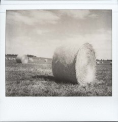 Impossible PZ 600 (Film-Love) Tags: people bw film countryside blackwhite scans photos scanner farm families years polaroidspectra scenics haybales expiredfilm instantphotography 2014 instantfilm analogcamera minoltainstantpro colorscan integralfilm 201407 epsonv500 impossibleimages filmformats instantbwfilm cityvillagescene impossiblepz600 analogimages filmexpired2012 3⅝x2⅞in 24bitcolor 125mmf10
