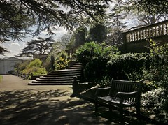 Romance in light (Dazzygidds) Tags: trees bench reaching seat steps romance textures framing bushes wollatonpark borders nottinghamshire ballustrade cedaroflebanon beautifullighting classicalbeauty cameliahouse