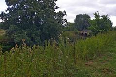 1004-19L (Lozarithm) Tags: landscape nt rivers 1224 lacock kx lacockabbey riveravonbristol smcpda1224mmf40edalif
