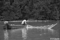 Traditional Fisherman (Alex.Quick) Tags: life travel cruise trees wild white holiday black color colour tree travelling nature water animal animals river landscape photography fisherman travels nikon colorful stream shoot shot natural wildlife traditional picture pic estuary photographs backpacking photograph malaysia borneo backpack colourful backpacker picturesque kinabatangan sukau idylic