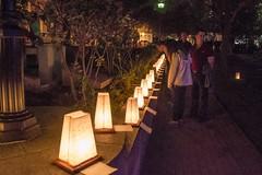 WWII Memorial Luminaria 8.23.14 (Photo by Jen Bonin)