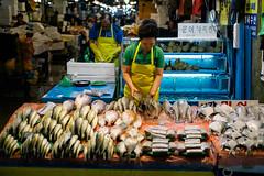 Noryangjin Fish Market - Seoul, South Korea (geedub11) Tags: 35mm asia fuji korea fujifilm southkorea fujinon rok xpro1 fujixpro1 fujifilmxpro1 xf35mmf14r 35mmf14r