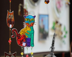 Colored Glass (Eleonora Cacciari) Tags: glass cat germany colored eleonoracacciari