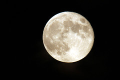 IMG_1030 (berserker170) Tags: luna moon 7d eos sigma 150500 noche night flickrexploreme