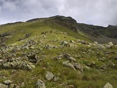 010 - salendo verso il passo di Col Carrel (TFRARUG) Tags: alps alpine alpi beccadinona emilius
