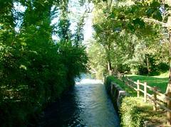 Risorgive del fiume Timavo