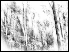 Untitled (GR167) Tags: slowshutterapp nc fall abstract autumn iphone iphoneography iphoneart