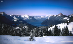 Fascinating Central Switzerland (VandenBerge Photography (this week mostly absent)) Tags: centralswitzerland schwyz switzerland europe mountains alps forest season winter snow snowscape sky colouringsky depth clouds nature nationalgeographic lonelyplanet mythenregion 2017 canon landscape lakelucerne lake brunnen