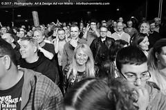 2017 Bosuil-Het publiek bij Purpendicular 16-ZW