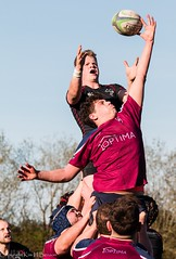 Line-out (kimbenson45) Tags: bletchley gosfordallblacks action ball black jumping lineout maroon motion movement outdoors reaching red rugby rugbyunion sport