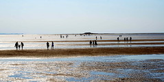 Pilgrimage to Hilbre Island (Peter.S.Roberts) Tags: interestingness interesting hilbreislands hilbre pilgrimage nature wirral sea riverdee seaside sand beach people walking seascape landscape perspective westkirby islands crossing deeestuary beachscene scenic hot summer silouettes sun bright tidal lowtide england wales tourists reflections sthildeburgh naturereserve unbridged puddles peaceful quiet relaxed calm composition depthoffield shadows sandy seashore sunshine afternoon