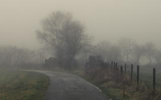 Gray day in the Eifel