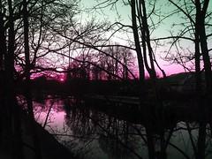 Hidden sky (-Mélancolie-Amnésique-) Tags: sky orée trees arbres canal péniche lorrain de la moselle région grand est inversion rvd retouche filter filtre sunset coucher soleil sun