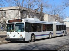 Winnipeg Transit #985 (vb5215's Transportation Gallery) Tags: winnipeg transit 2004 exoc transpo new flyer d60lf